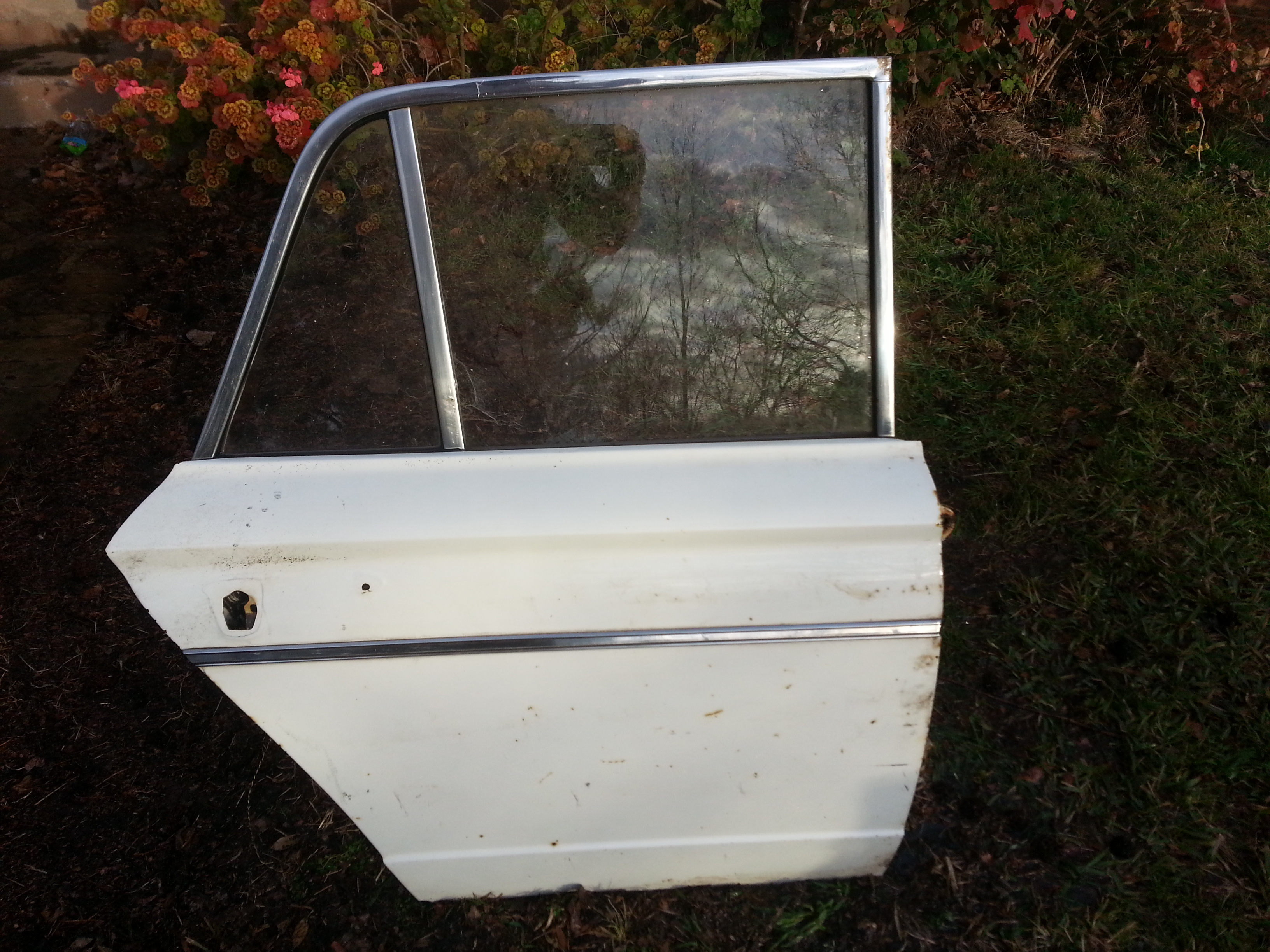 Rear Driver's Side Door Shell, Salvage